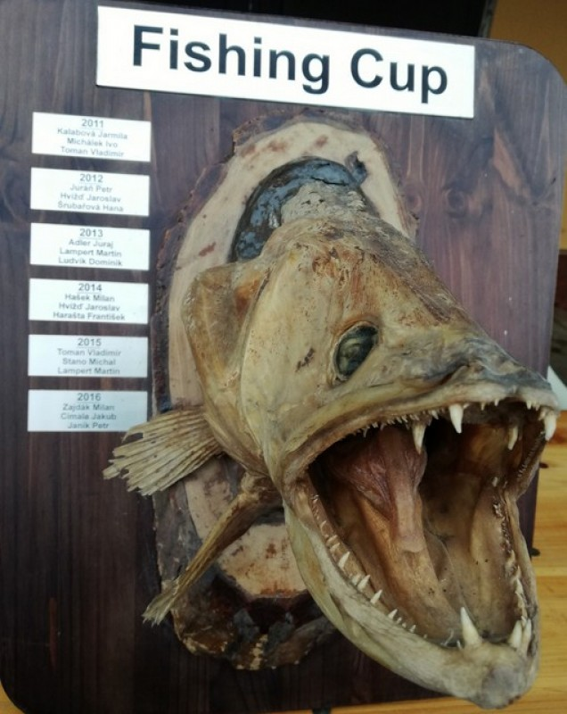 Fishing CUP